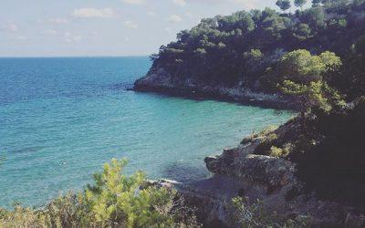 Adios Cale Moros #vue #españa #summervibes